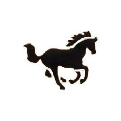 Horse/ caballo