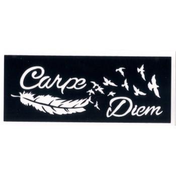Carpe Diem 8cm X 3cm Ref Y24 Glitter Tattoo Spain